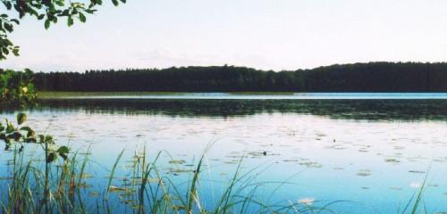 Bolmen (Bolmensee) – Camping, Angeln, Ferienhaus-Urlaub