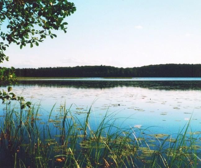 Schwedische Seen: Bolmen