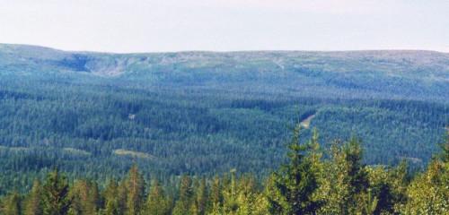 Fulufjället Nationalpark: Wandern im Fjäll, Camping in Särna
