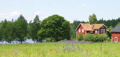 Schwedenhaus Vermittlung zum Mieten & Kaufen – Anbieter