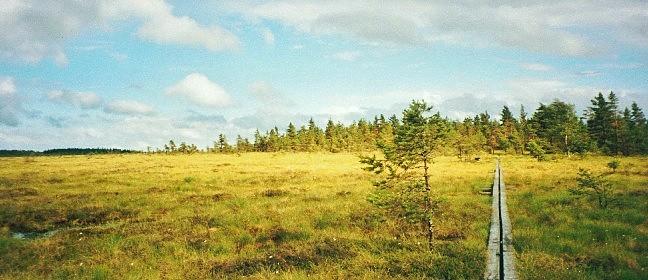Wandern in Schweden: Naturstig