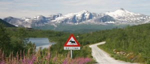 Pauschalreise durch Nordschweden
