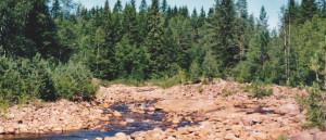 Fluss in Härjedalen