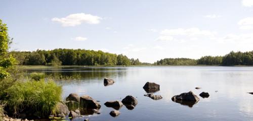 Åsnen (Asnen-See): Ferienhäuser in guter Lage & Angeln