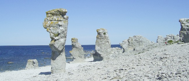 Digerhuvud auf Fårö (Gotland)