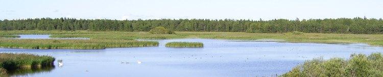 Dalarna (Schweden)