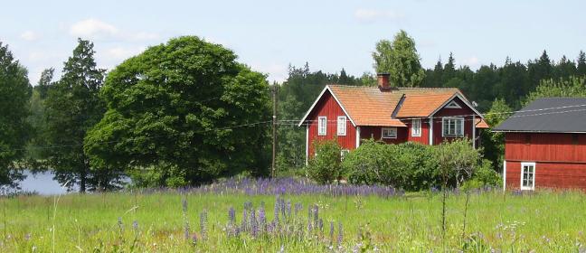 Schwedenrot: traditionelles Bauernhaus in der Falunfarbe