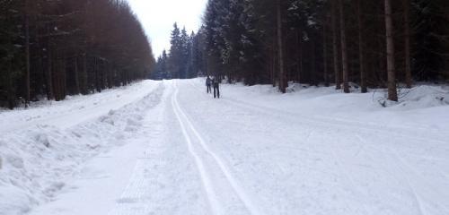 Wasalauf & Vasaloppsleden – Aktivurlaub in Dalarna