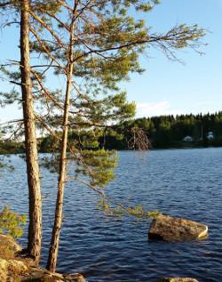 Dalsland: Stora Le