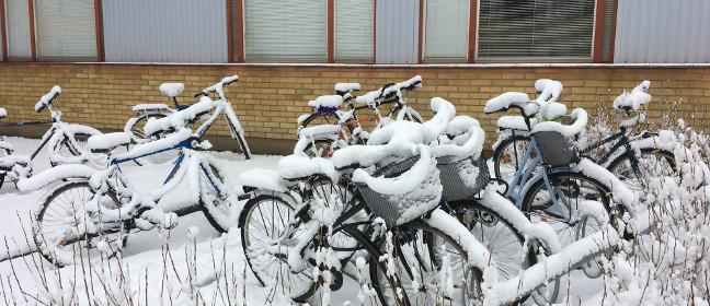 Linköping: Fahrräder bei der Universität