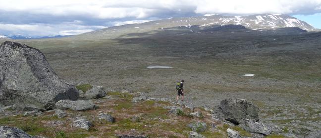Schwedentipp: Wandern in Lappland