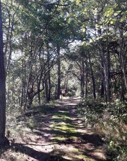 Hindens Rev: Wanderweg